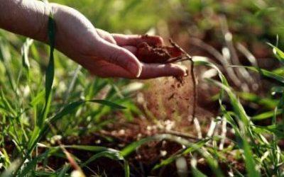 Poziv poljoprivrednim proizvođačima