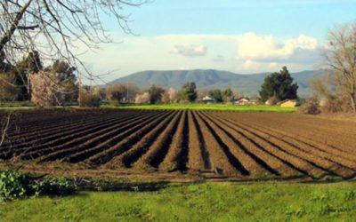 Zakup poljoprivrednog zemljišta u vlasništvu Općine Kiseljak