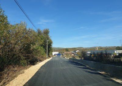 Brestovsko put 3